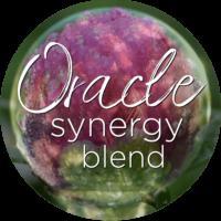 flower essence oracle synergy blend