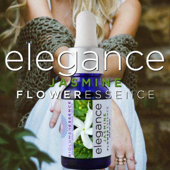 Elegance Jasmine Flower Essence