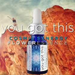 You Got This Flower Essence