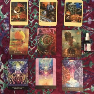 FLORACLE Oracle Card Reading