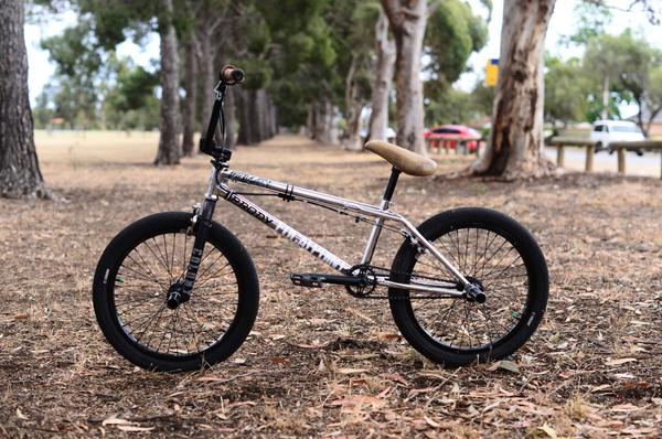 polly-bike1_600x
