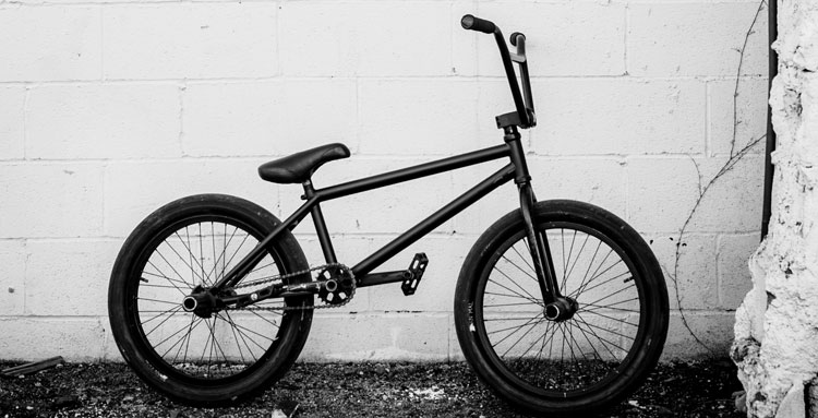 ryan-niranonta-bmx-bike-check-fiend-animal-bikes