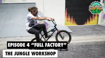 The Jungle Workshop Full Factory Distribution