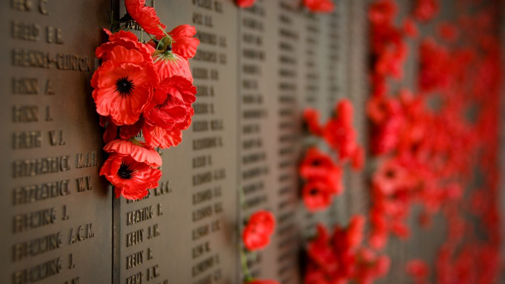 Memorial Day Poppy Wall, Yankee Air Museum and Rebecca Grant