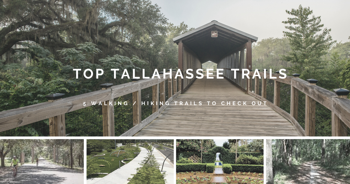 Top Tallahassee Trails