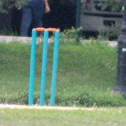 Guyana And Caribbean XI Compete For 2017 Indo Caribbean Federation Cup
