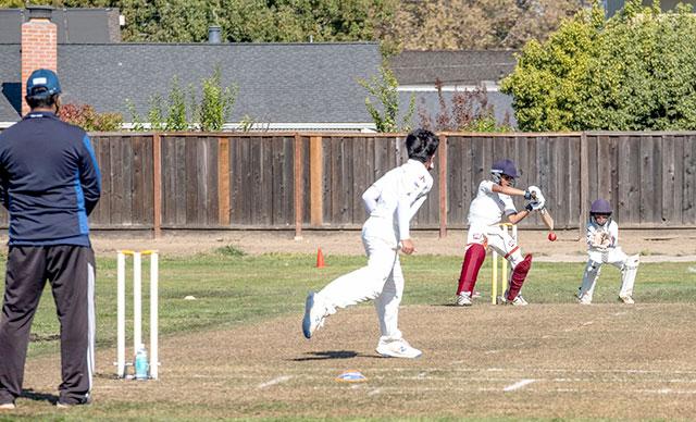 california cricket academy turf wicket