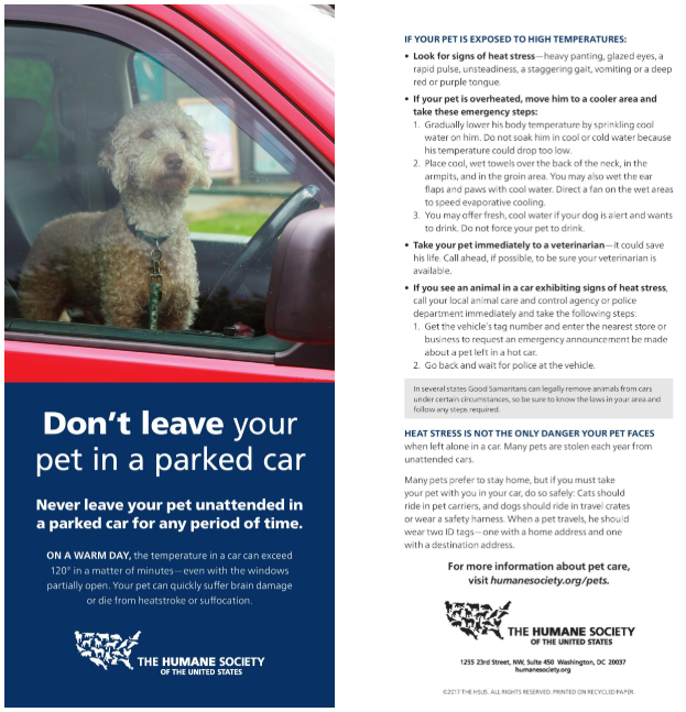 🐶 Don't Leave Your Pet In A Locked Car. 🚘