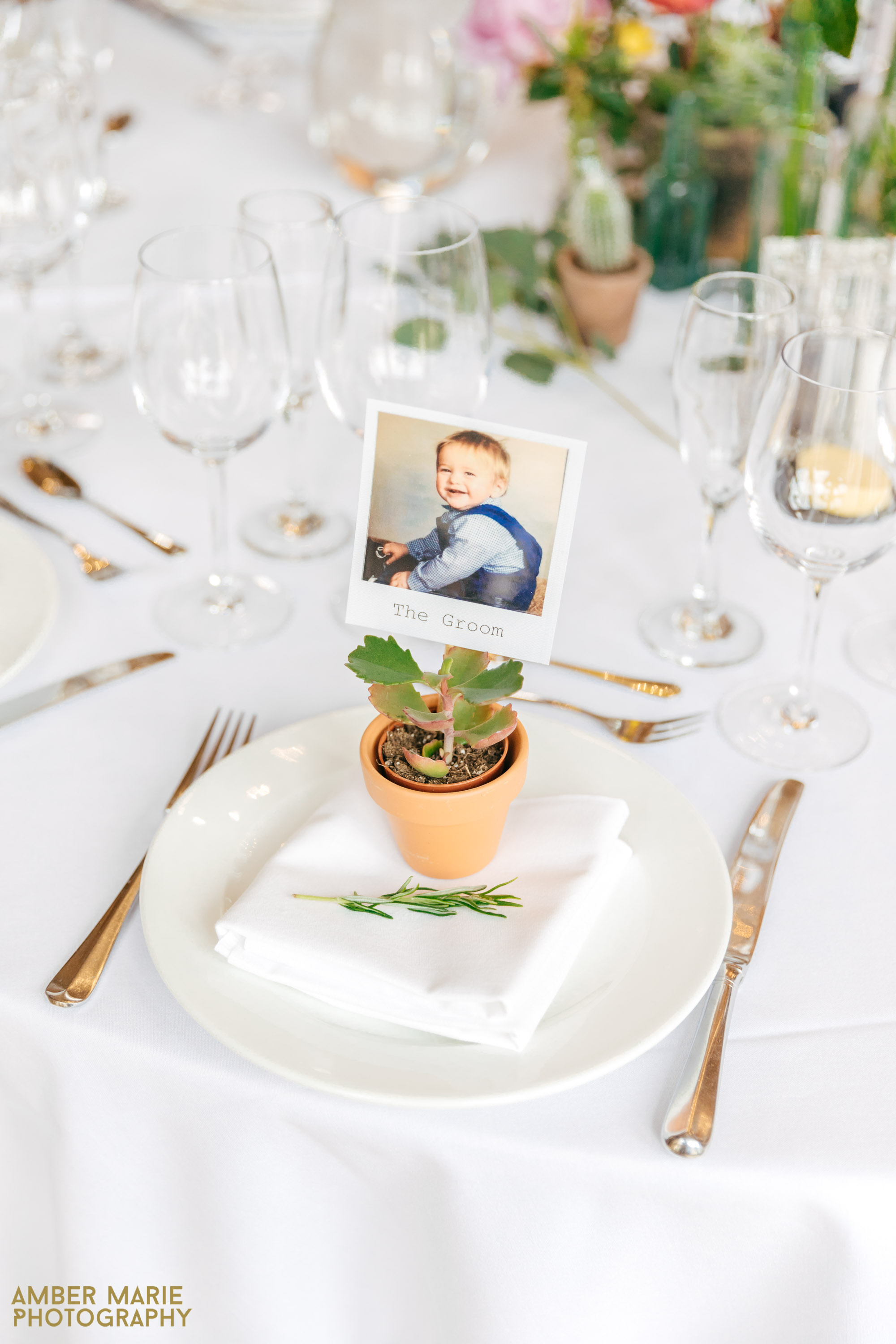 succulent wedding favours at kingscote barn