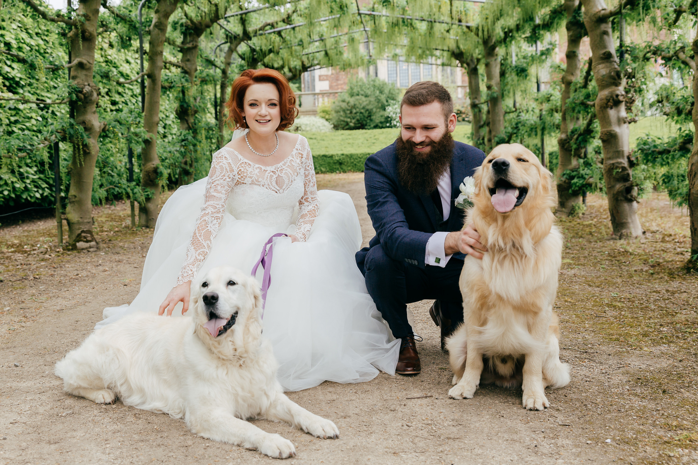 bride and groom with pet dogs on wedding day