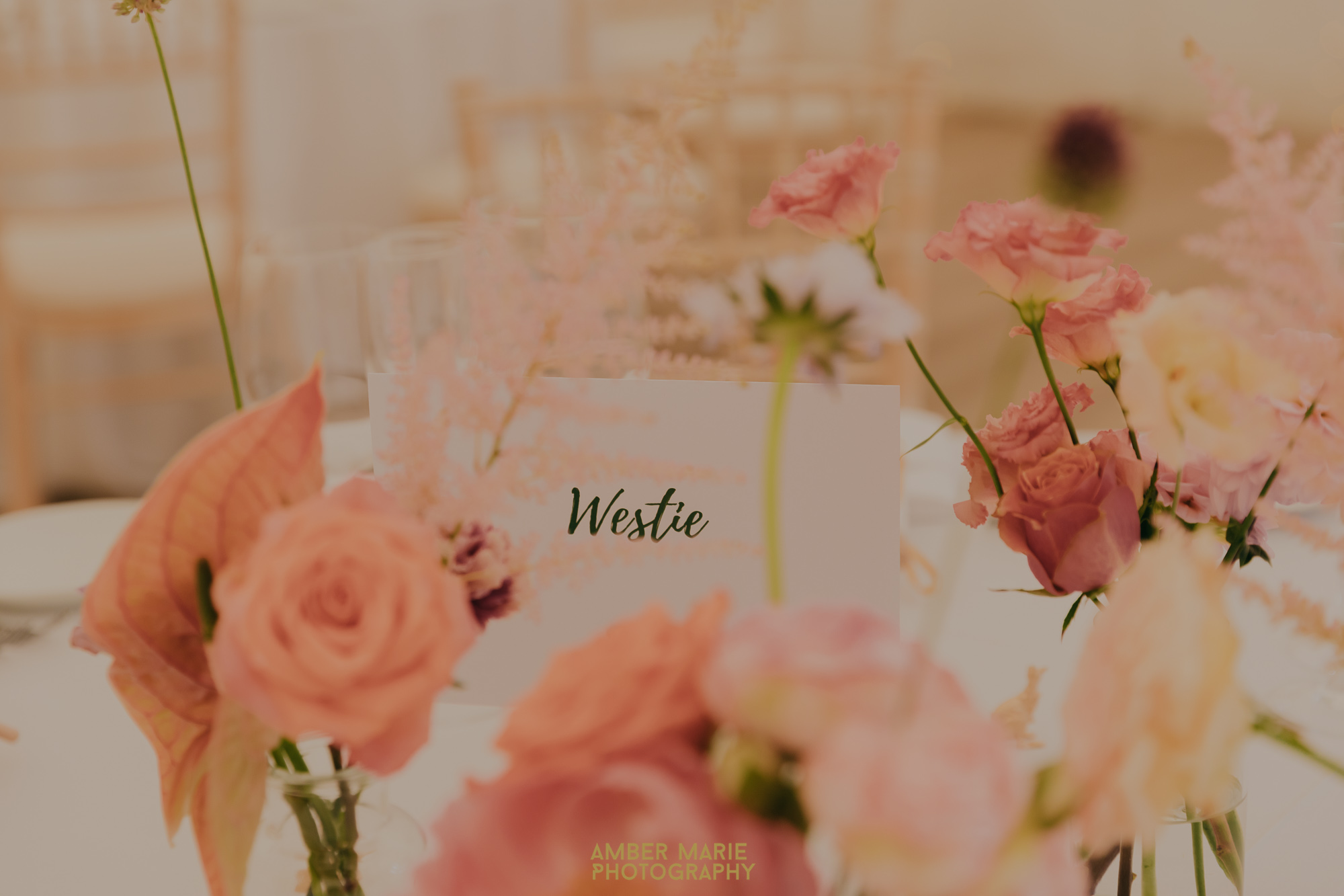 Dog inspired wedding reception table names