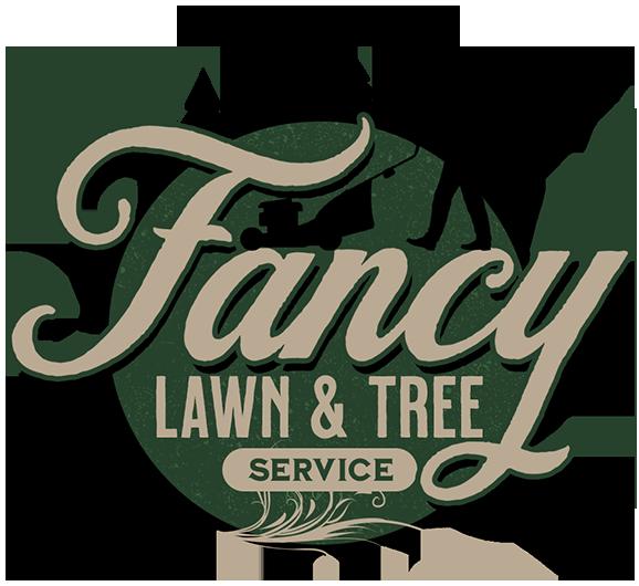 logo_fancy500