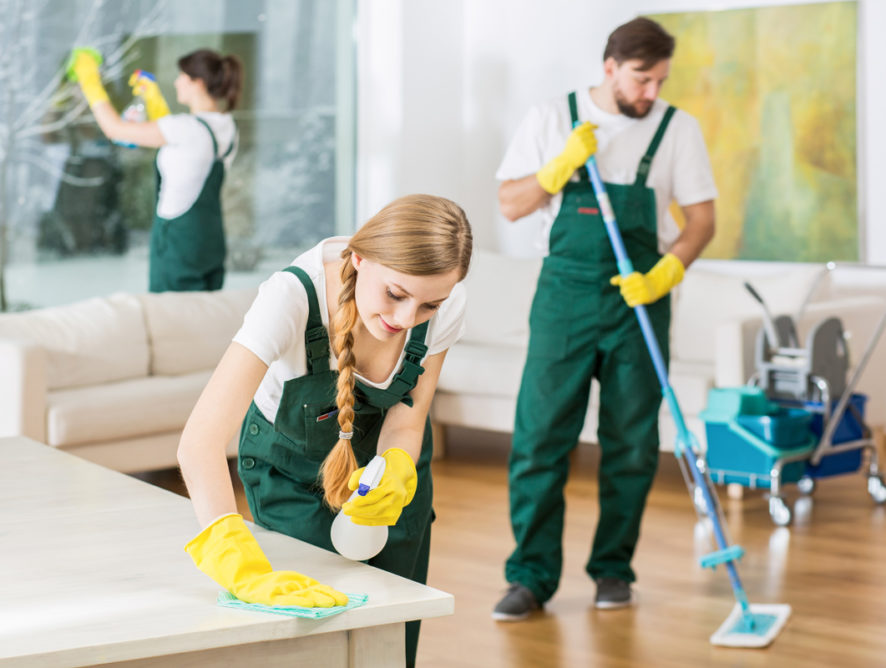 Cloupe cleaning living room