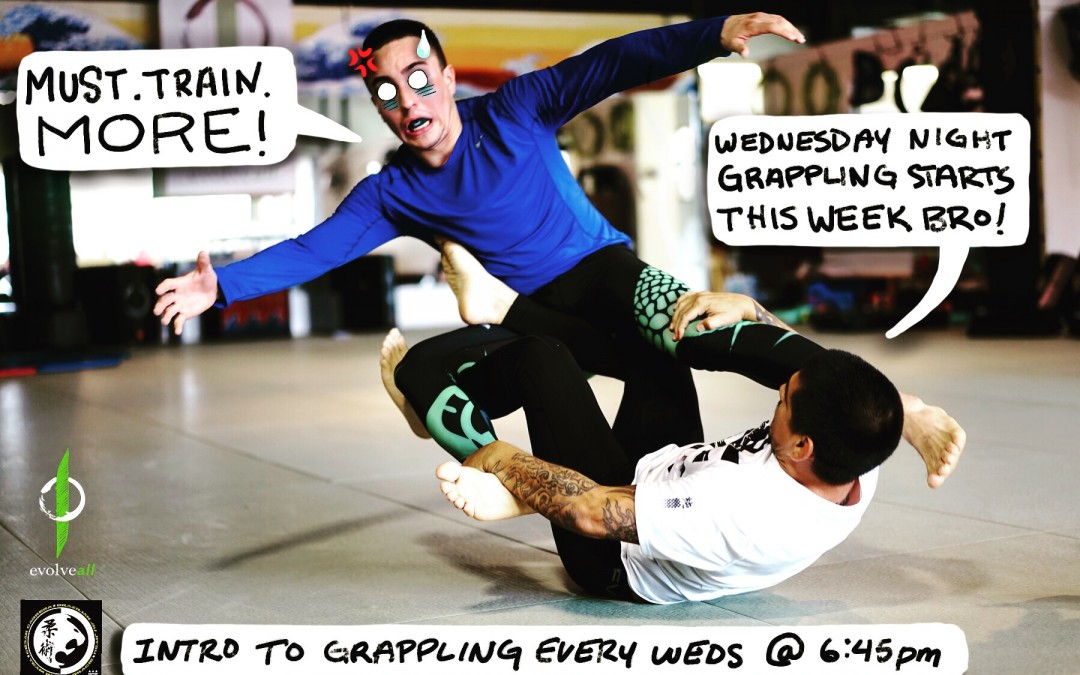 Wednesday Evening Grappling and Brazilian Jiu-Jitsu