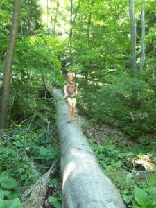 best fathers day gifts - walking on logs