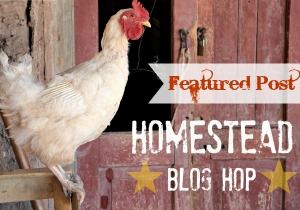 Homestead Blog Hop #8