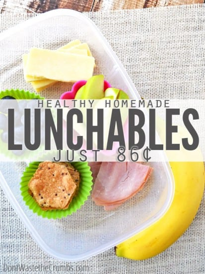 17 natural back to school DIYs - Healthy Lunchables from Don't Waste the Crumbs
