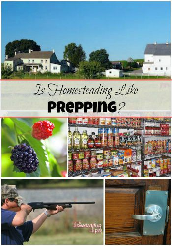 Featured on the Homestead Blog Hop - Is Homesteading Like Prepping? from The Homesteading Hippy