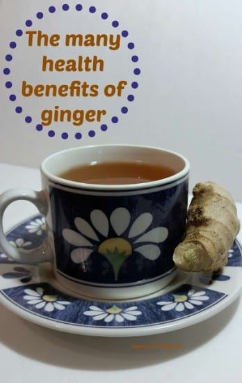 Featured on the Homestead Blog Hop - Health benefits of ginger