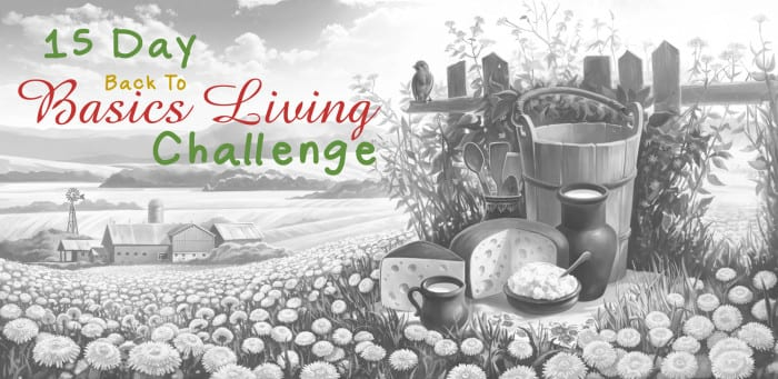 15 Day Back to Basics Living Challenge - get back to basics and get a fresh start.