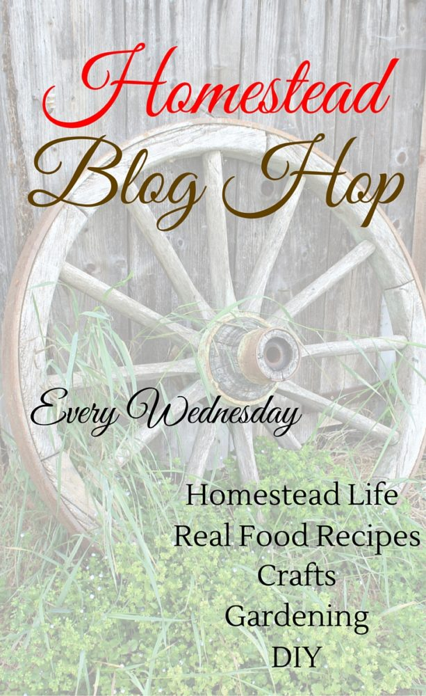 Homestead Bog Hop 148