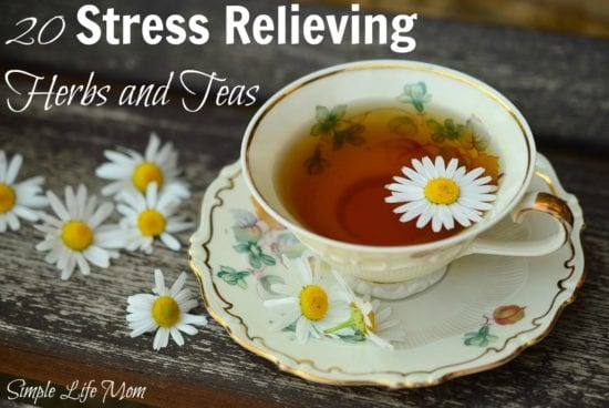 21 Handmade Christmas Gifts - 20 Stress Relieving Herbs and Teas from Simple Life Mom
