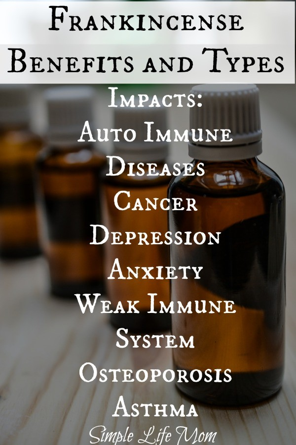Frankincense Benefits and Types from Simple Life Mom