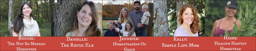 homestead-blog-hop-host-picture