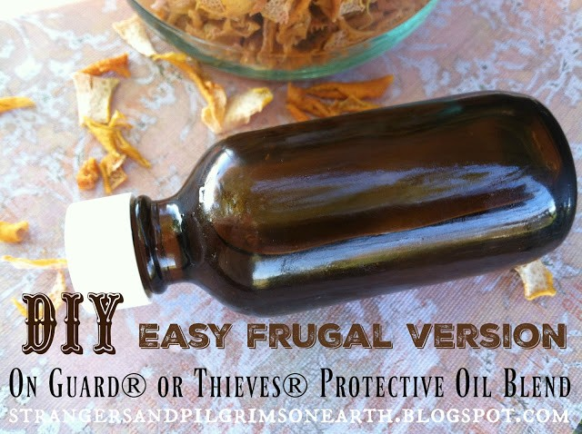 Homestead Blog Hop Feature - Frugal DIY Version of Thieves or On Guard