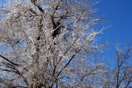 homestead-blog-hop-feature-how-to-prepare-for-winter-storms
