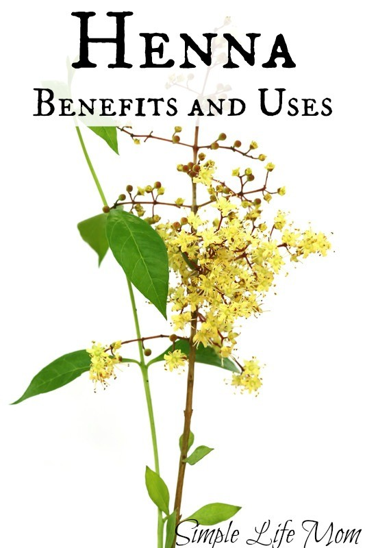 Henna Benefits and Uses from Simple Life Mom