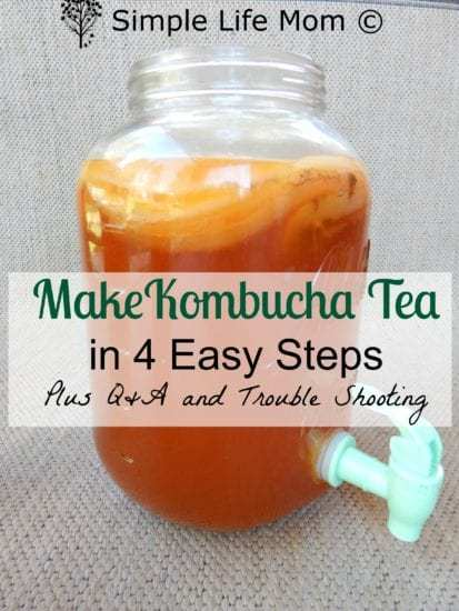 How to Make Kombucha Tea in 4 Easy Steps. Get probiotics, vitamins, and minerals for a better natural healthy gut from Simple Life Mom