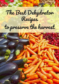 Homestead Blog Hop Feature - Dehydrator recipes for produce