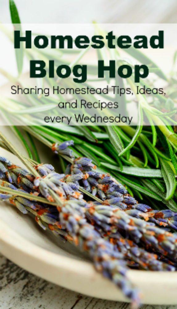 Homestead Blog Hop 350