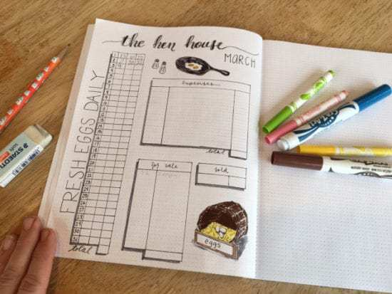 Homestead Blog Hop Feature - Bullet Journal egg production