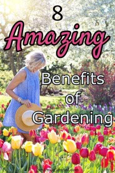 Homestead Blog Hop Feature - 8 Amazing Benefits of Gardening