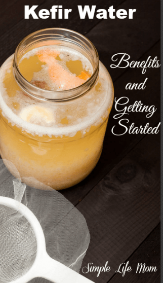 Kefir Water Health Benefits and Getting Started by Simple Life Mom