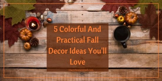 Homestead Blog Hop Feature - 5 Colorful and Practical Fall Decor Ideas You'll Love