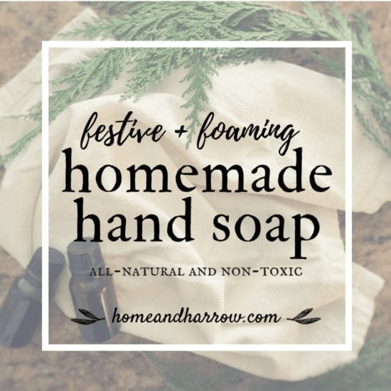 Homestead Blog Hop Feature - Festive Foaming Homemade Hand Soap