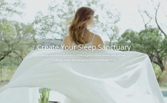 11 Best Tes for Sleep - Plus Savaat Dreams products