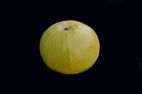 Homestead Blog Hop Feature - amla-amalaki the fruit to keep you healthy