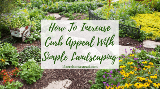 Homestead Blog Hop Feature -Increase-Curb-Appeal with Simple Landscaping
