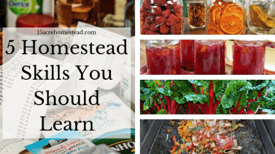 Homestead Blog Hop Feature - 5-Homestead-Skills-You-Should-Learn
