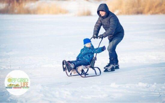 Homestead Blog Hop Feature - Outdoor Christmas Activities