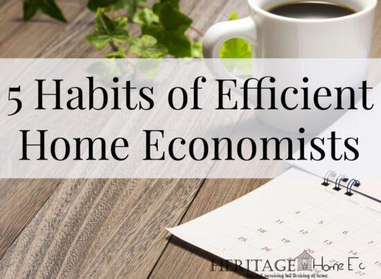 Homestead Blog Hop Feature - 5 Habits of an Efficient Home Economist