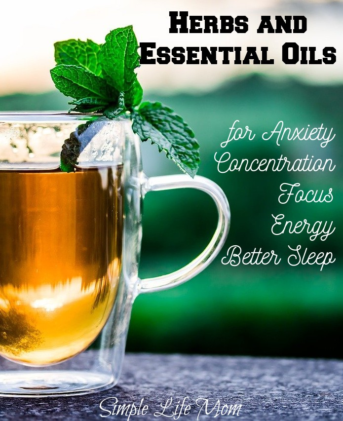 Back to School Herbs and Essential Oils for anxiety, sleep, calmness, and focus