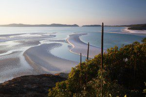 Xantheria at Hills Inlet with Whitehaven Beach stretching to the horizon, Queensland, Australia