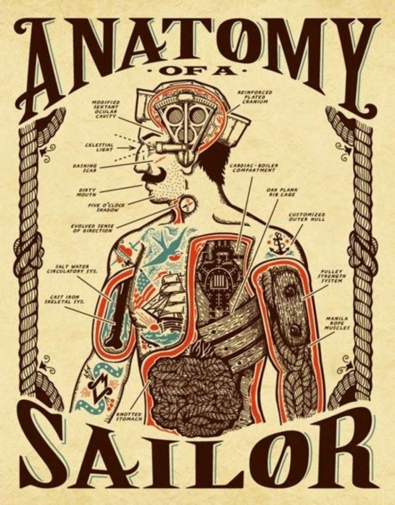 anatomy_of_sailor