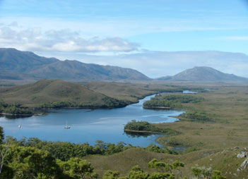 taipan-in-melaluka-inlet-port-davey-tasmania-west-coast