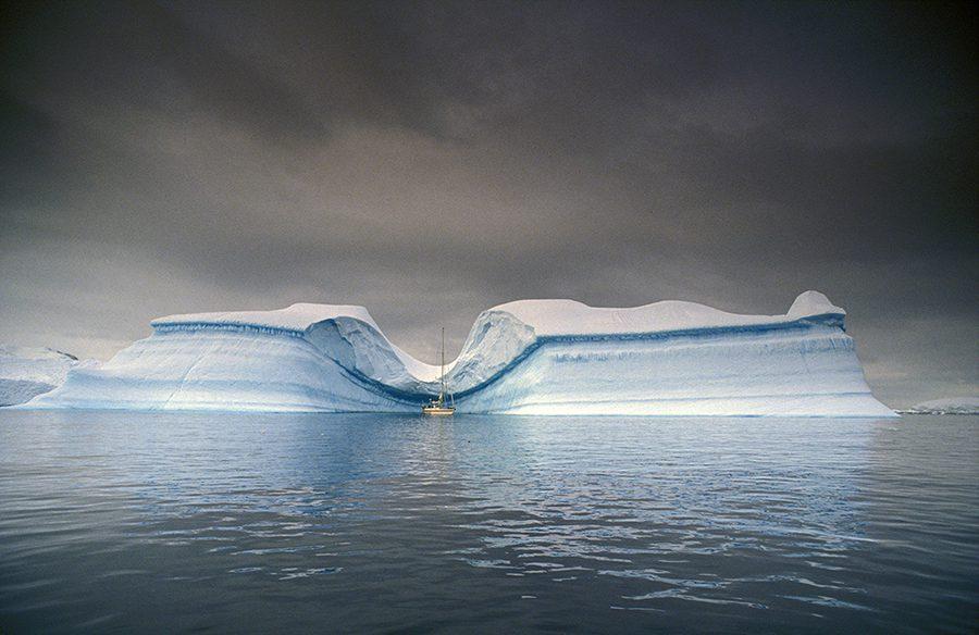 dreaming the Antarctica rick tomlinson